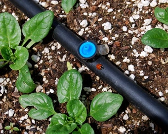 Drip Irrigation Plan for Raised Beds