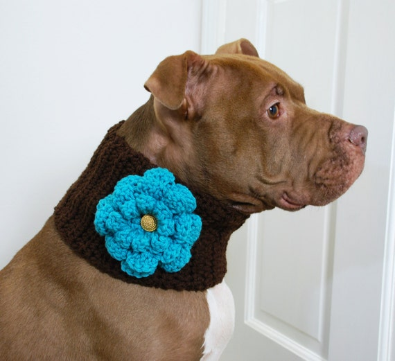 Dog Cowl Brown with Teal Flower for Large Breeds