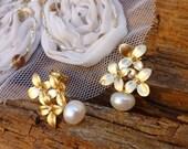 Vintage earrings as plug of Blos...