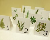 Leaf Wedding Table Cards, Botanical Table Tents, Woodland Leaf Numbers, Wedding Decor, Woodland Wedding Cards, Woodland Table Tents W109