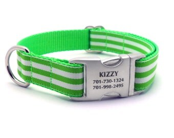 Monarch Stripe Laser Engraved Buckle Personalized Dog Collar - LIME GREEN