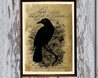 Crow art print Old paper Antiqued decoration vintage looking AK250