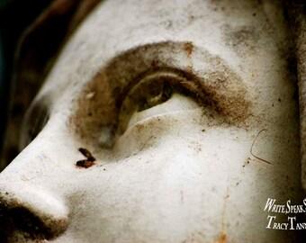 TruthSeeker, Angel, Face, Eyes, Moss, Sky, Praying, Looking, Stone, Statue, Cemetery, Headstone, Messenger, Richmond Virginia, Photography