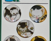 The Shy LIttle Kitten Book Magnets