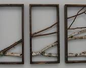 Birch Branch Triptych, walnut, urban forest, rustic, minimal list,