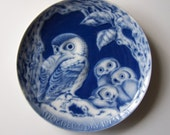 MOTHER OWL & OWLETS  - 1973 Mother's Day Plate - Cobalt Blue And White - Royale China - Made In Germany