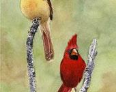 Red cardinal bird painting 8x10original watercolor painting wild birds original wall art earthspalette - Earthspalette
