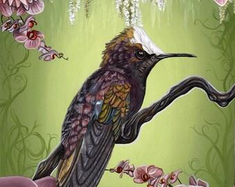 Hummingbird White & Purple Orchids Flowers Nature A4 Art Print