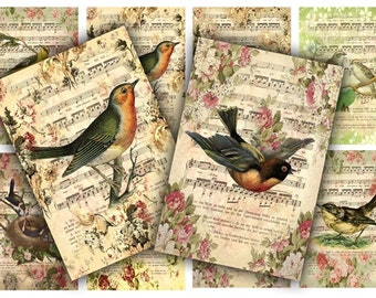 Digital Collage Sheet Download - Bird Music Sheet Tags -  403  - Digital Paper - Instant Download Printables