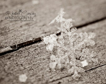 Instant Download, Winter Snowflake Pastel Photo New Baby Nursery Wall Art Dreamy Whimsical Bokeh Fine Art Photography affordable print