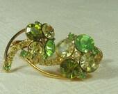 Hobe Rhinestone Earrings