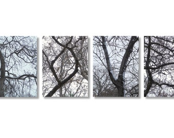 Valentine LOVE, Nature Photo, Tree Branches, LOVE in Tree Branches, Letters in Trees, Unique Nature Photo Print Set