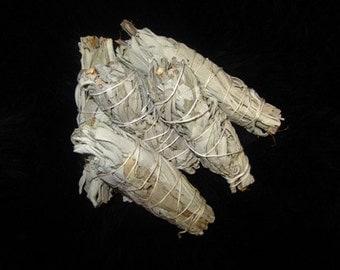 Small White Sage Bundle (1)