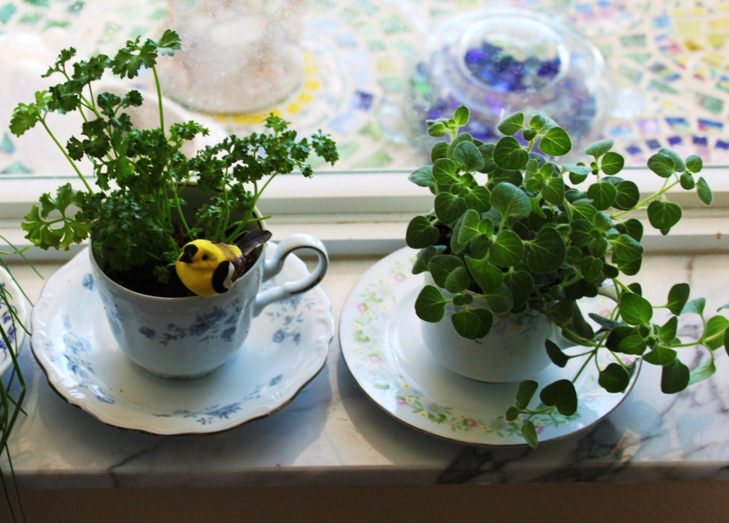 2 Teacup Cup And Saucer Planters For Windowsill Herbs