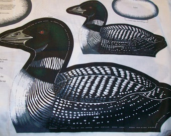 Loon Mother and Baby Fabric Panel