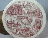 Vintage Knoxville Tennesee Plate Gateway to the Smokies Mulberry Transferware Vernon Kilns Commemorative