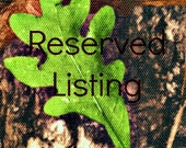 Reserved Listing for Elizabeth Chappell