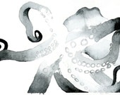 "Octopus Painting - So Now You Knowtopus  - Fine Art Giclee Print 7/50 of 6""x4"" Black and White Watercolor"