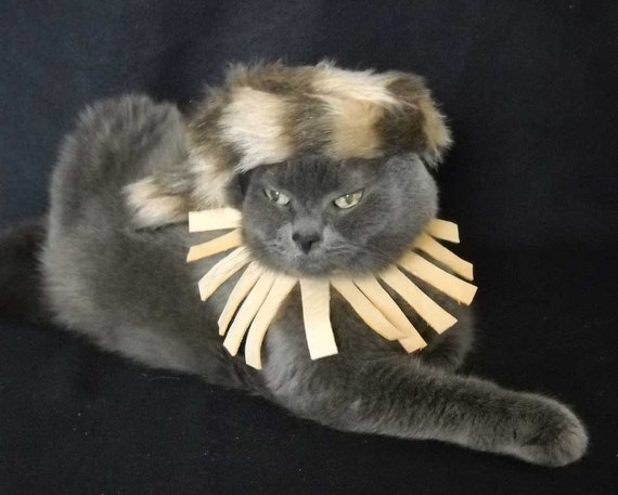 Daniel Boone Pet Costume with Leather Small   Pioneer Costume for Pets