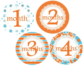 Baby Monthly Stickers Baby Shower Gift Month Stickers