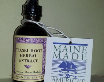 TEASEL ROOT Herbal Extract, 2, 4, 8 oz, Made in Maine