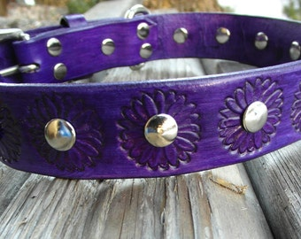 Purple Dog Collar with flowers