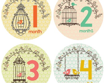 Bird Monthly Stickers for Baby Girl by Lucy Darling - Bird Cage Design - Months 1-12