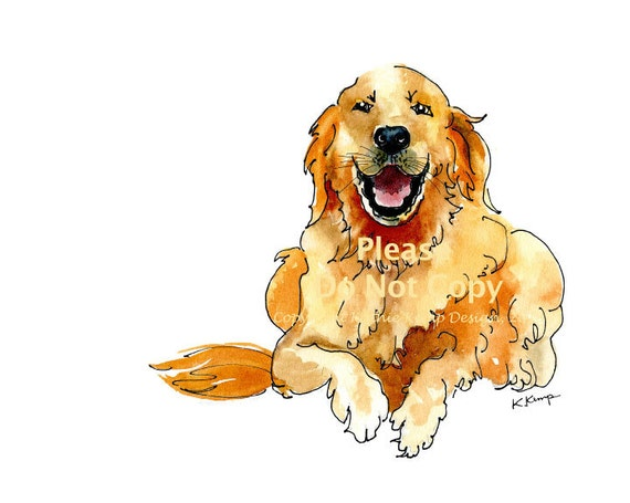 Golden retriever drawing pen ink watercolor gift idea - Dessin golden retriever ...