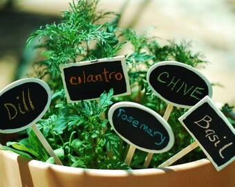 Herb Plant Chalkboard Pot and Garden Markers - Set of Five