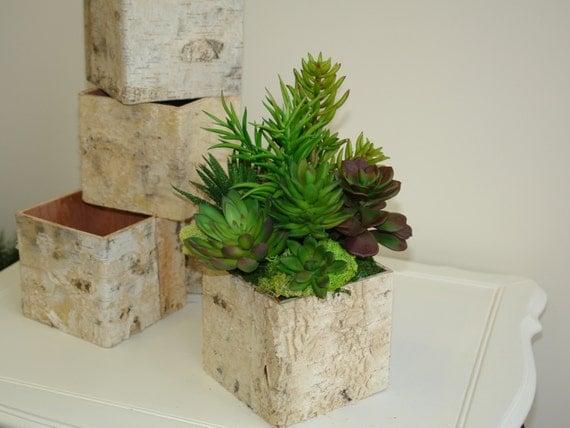 Rustic Natural Birch Bark Wood Vases Basket Flower Pot Home