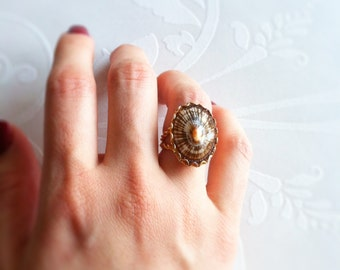 Vintage Agate Cocktail Adjustable Ring in Scalloped Setting