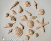 Mini Edible Beige Seashell Cupcake Toppers (with Bonus Gift)