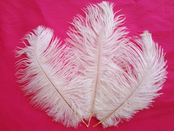 angel white ostrich drab feathers wholesale bulk supply craft