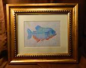 Original Framed Giclee Print - 'Piranha'