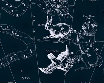 Constellation, Antique print, Moon, Constellation of the Columba, 73