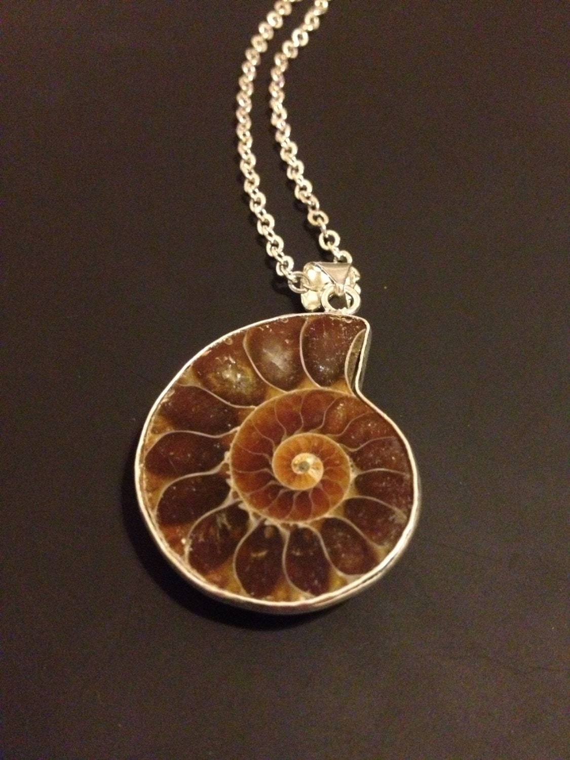 ammonite fossil pendant necklace by nightmarianne