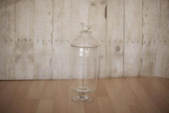 Bird Apothecary Jar - Candy Buffet Jar - Glass Dish - Bird top glass container
