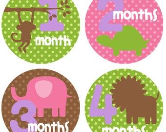 Monthly Newborn Stickers First Year Stickers Baby Month Milestone Stickers Girl Baby Shower Gift Newborn Photo Prop Baby Accessories BMST027