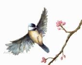 Bird watercolor print/ Flying Chickadee watercolor print 8x10/  Fine Art Print-watercolor bird- bird art, nature, bird watercolor painting