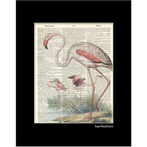 Dictionary Art PINK FLAMINGO Bird Print vintage dictionary