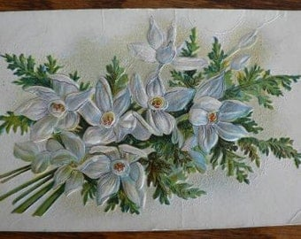 vintage POSTCARDS ... Lily FLORAL SPRAY  stamped 19xx  ...