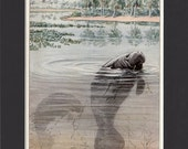 Florida Manatee 1916 Vintage Bookplate Print by Louis Agassiz Fuertes Vintage Mounted with Mat Manatee Print Dugong Print Manatee Picture