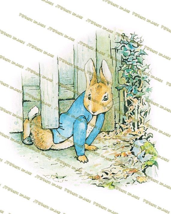 Vintage Rabbit Digital, Beatrix Potter Peter Rabbit Nursery, Printable Downloads : HIGH RESOLUTION as 600 ppi