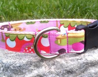 Strawberry Hut 1 Inch Width Dog Collar