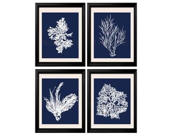 Coral Print Nautical Decor, White Blue Sea Coral Print Set of FOUR 5x7, Coral Wall Art, Coral Print, Sealife, Bathroom Decor, Nautical Art