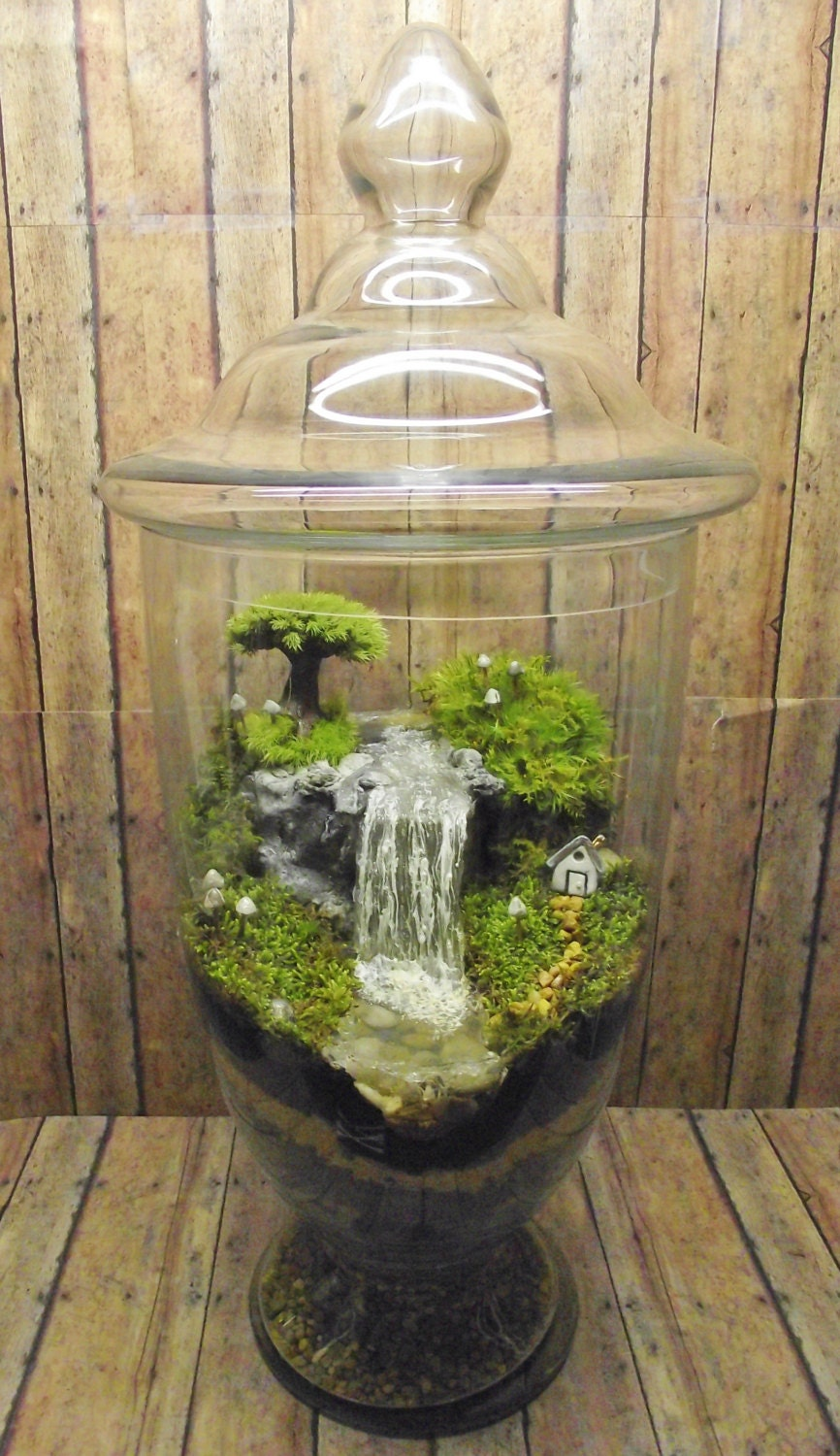Aquarium Wood Design