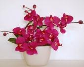 Magenta Pink Phalaenopsis Orchids - Modern Silk Floral Arrangement
