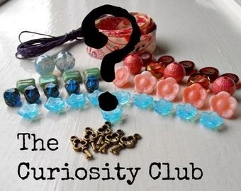 The Curiosity Club - 6 months - Monthly Bead Club