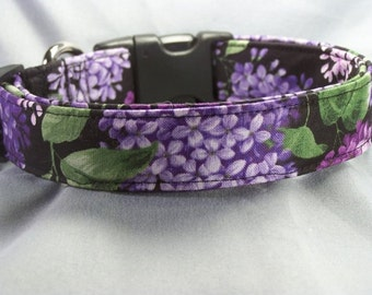 Lilac Flowers on Black Dog Collar