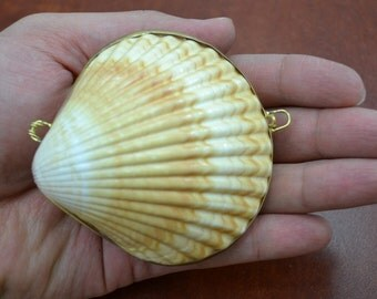 YELLOW CUP Sea Shell Pill TRINKET Box Coin Purse